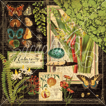 """Graphic 45 Nature Sketchbook Double-Sided Cardstock 12x12"""" - Nature Sketchbook"""