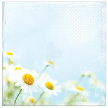 """Paper House 12x12"""" Floral Paper - Bright Daisies"""