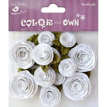 Little Birdie Assorted Spiral Rose 12pcs Color Your Own