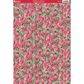 Kanban A4 Background Card - Red Roses In Bloom