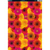 Kanban A4 Background Card - Gerberas
