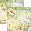 """Ciao Bella Double-Sided Cardstock 12x12"""" Microcosmos Daisies"""